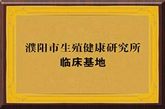 东方荣誉4